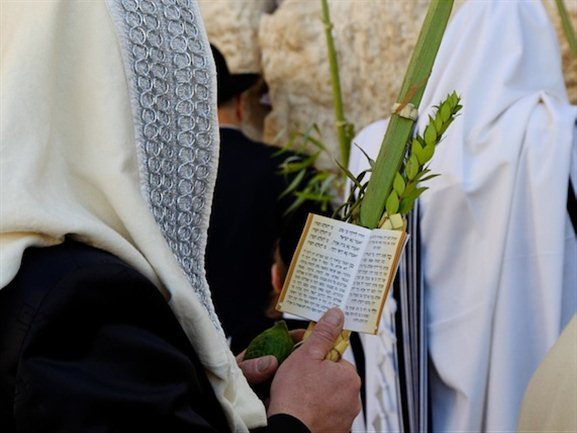 http://www.waynestiles.com/wp-content/gallery/siloam-sukkot/man-praying-with-four-species-during-sukkot-at-western-wall-cd091006066.jpg