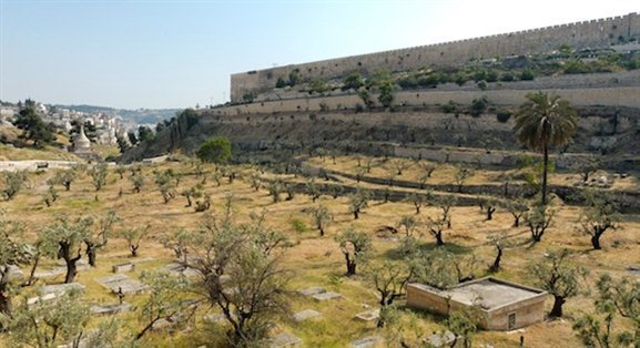 idron Valley from north with olive trees tb051906428 The Kidron Valley— Your Burial Can Point to Your Faith